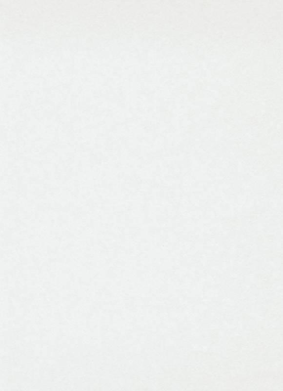 erismann RollOver Basis-Vlies, Renovlies-Tapete, 25 x 0,75 m, entspricht 18,75 m², Stärke: 150 g/m² (super strong)